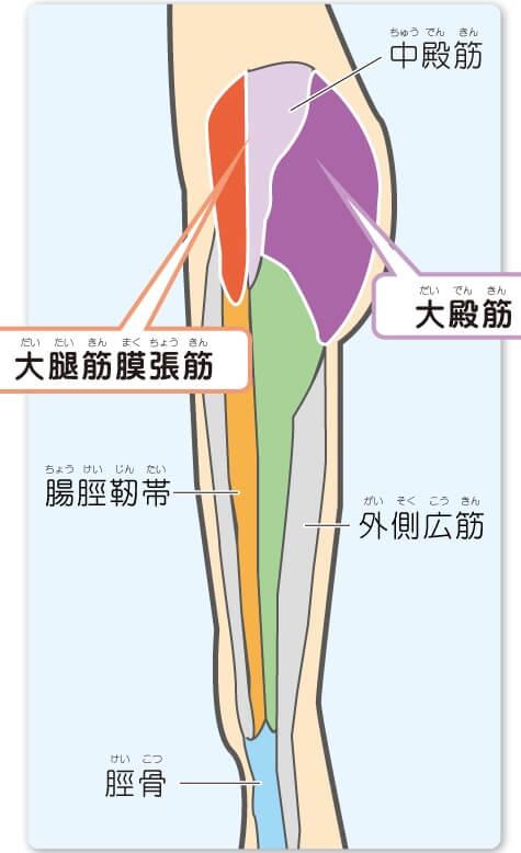 cb8b89270e 腸脛靭帯炎(ランナー膝)】中・高校生のスポーツ選手に多い怪我⑨